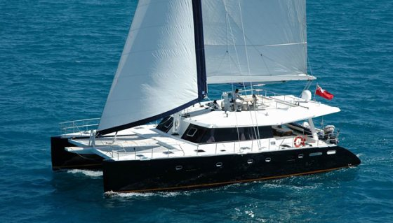 CATSY offers 20% off for all last minute charters!